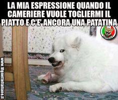 Il cameriere inopportuno  (www.VignetteItaliane.it)