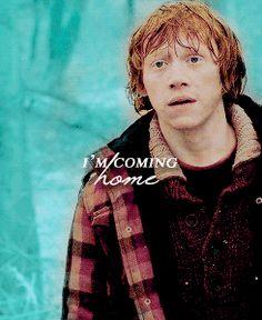 Ronald Weasley & Hermione Granger