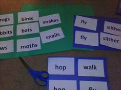 Noun and verb-sentences