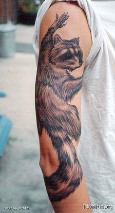 raccoon  by Rich Bustamante