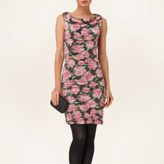 Phase Eight Multi-coloured hydranga print dress- at Debenhams.com
