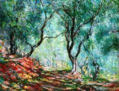 Claude Monet - Bois d'oliviers au jardin Moreno, 1884. #arte