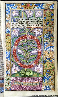 Book of Hours, MS M.7 fol. 44r - Images from Medieval and Renaissance Manuscripts - The Morgan Library & Museum