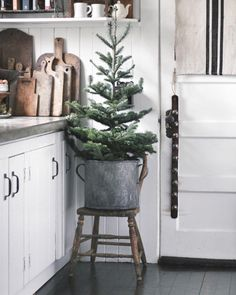 Found a perfect little perch for one of our trees. I love walking in the door & being greeted by the smell of fresh pine!