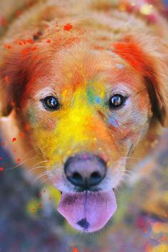 Color me rad!!