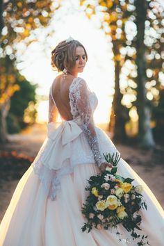 2016 Spring Garden Romantic A Line Wedding Dresses Long Sleeves Sheer Crew Neck Backless Bow Plus Size Pregnant Maternity Bridal Gowns