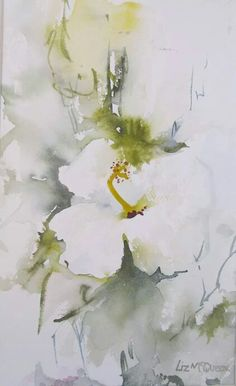 White Hibiscus  - Lovely watercolour