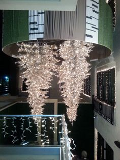 At The Birchwood Hotel in St. Petersburg, Florida, 