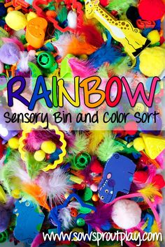 We had fun with this! Sensory Play – Rainbow Sensory Bin & Color Sort