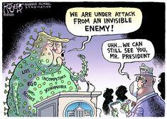 Rob Rogers for April 2020 - GoComics Cartoon Memes, Funny Cartoons, Funny Memes, Funny Political Cartoons, True Memes, Political Discussion, Political Satire, Caricatures