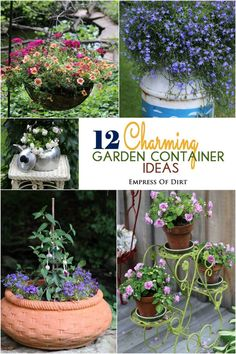 12 Charming Garden Container ideas (for you to steal for your garden)