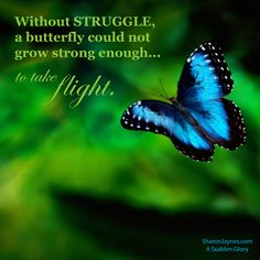 Without STRUGGLE a butterfly could not grow strong enough to take flight. A Sudden Glory/SharonJaynes Butterfly Quotes, Flower Quotes, Glory Quotes, Forever Your Girl, Growing Quotes, Praying For Your Husband, I Know The Plans, Biblical Inspiration, Choose Life