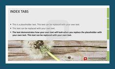 Registerkarten bzw. Index Tabs eignen sich hervorragend für eine strukturierte PowerPoint-Präsentation. Probieren Sie es aus! @ http://www.presentationload.de/registerkarten.html