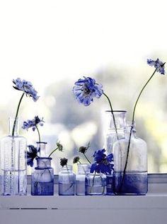 Tonos azules para una estampa preciosa