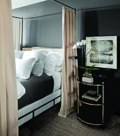 Dark walls + canopy bed