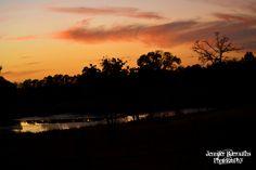 A beautiful sunset I caught