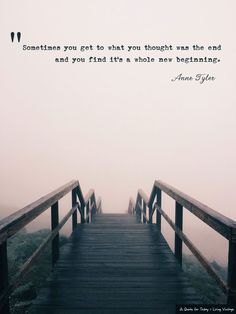 I'm beginning a new blog series today and it starts with this quote from Anne Tyler's book, Ladder of Years