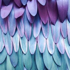 17 Inspiring Photos of Texture | Design*Sponge