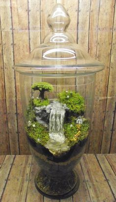 Amazing Huge Waterfall Terrarium with Raku Fired Miniature House, Tree, and glow in the dark Mushrooms - OOAK Handmade by Gypsy Raku - Amazing Huge Waterfall Terrarium with Raku Fired Miniature - Indoor Garden, Garden Art, Garden Design, Air Plants, Indoor Plants, Jardin Decor, Terrarium Diy, Terrarium Containers, Water Garden