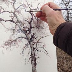 Painting a Watercolour Tree