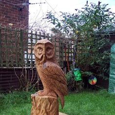 Chainsaw carved 4 ft Oak Owl