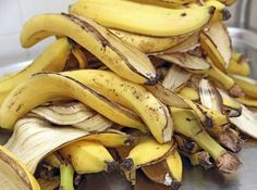 When we eat a banana, we naturally throw away its peel. Well, here are some surprising uses of banana peels and their effects which may be unknown to you. Organic Fertilizer, Organic Gardening, Orchid Fertilizer, Gardening Hacks, Banana Peel Uses, Psoriasis Diet, Eating Bananas, Soil Improvement, Aquaponics System