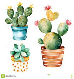 水彩#手描き#サボテン#植物#と#安全#植物#イン#ポット. - New Ideas # Aquarell handgezeichnete Kaktuspflanze und Sicherheit Pflanze Inpot Aquarell # handbemalt # Kaktus Succulents Drawing, Cactus Drawing, Cactus Painting, Plant Drawing, Cactus Art, Cactus Flower, Cacti And Succulents, Planting Succulents, Flower Pots