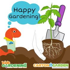 While you wait to hear our winner announcements, brush up on your transplanting knowledge!