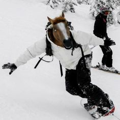HORSE HEAD MASK! I would die laughing if I saw this while we were skiing!