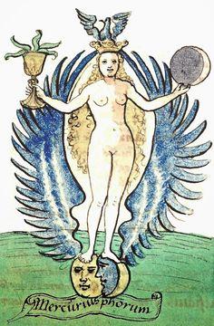 """""""The Mercurius Phorum"""" published in 1527 and attributed to Arnaud de Villeneuve"""