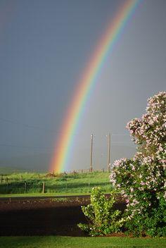 Enviado por: pt2getfit - Miércoles 15 de Junio de 2011 - Colotn , WA ( condições de tempo corrente )  O sol estava se pondo depois de uma chuva forte hoje à noite e havia um arco-íris brilhante.