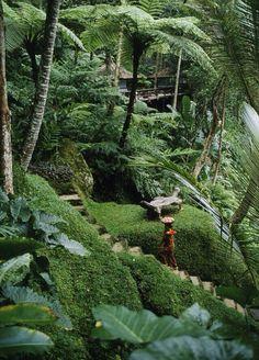 Prachtige Bali! # purevolunteer