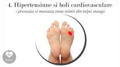 reflexologie puncte de preropunctura inima Sciatica, Flip Flops, House, Women, Home, Beach Sandals, Homes, Slipper, Houses