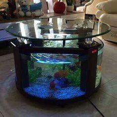 Loving this aquarium coffee table