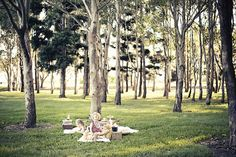 Lovely spot for a picnic.