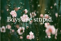 Boys are stupid quotes quote girl boys boy girl quotes stupid