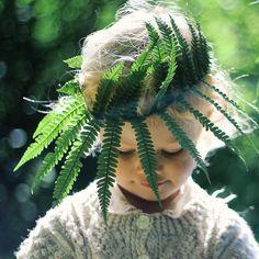 fern woodland crown