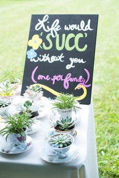teacup #succulent wedding favors @weddingchicks