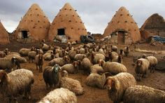 """Earthen """"Beehive Houses"""" Have Been Keeping Syrians Naturally Cool for Centuries 