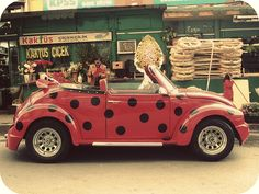Polka dot VW. It's a Lady Bug!