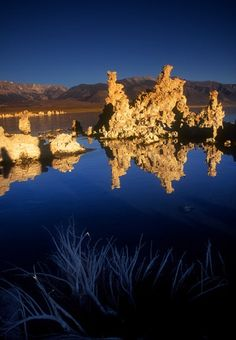 ©2008 Bruce Muirhead
