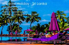 Sri Lanka tour packages are completely topped off with bliss, joy, undertakings, and love. Sri Lanka tour packages can be profited at all financial plan, 15 May, Terms And Conditions, Financial Planning, Day Tours, Sri Lanka, Conditioner, Calendar, How To Apply, Packaging