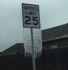 24 Best Funny Photos for Sunday. Serving only the best funny photos in 2019 that will help you laugh today. Funny Signs, Funny Memes, Funniest Memes, Winter Schnee, Speed Limit, Just For Laughs, Funny Posts, Laugh Out Loud, The Funny