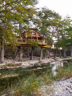 Nelson Treehouse Season 6 Frio River Treehouse