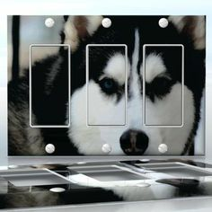 DIY Do It Yourself Home Decor - Easy to apply wall plate wraps | Blue Eyed Husky  Sled dog friend  wallplate skin sticker for 3 Gang Decora LightSwitch | On SALE now only $5.95