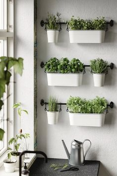 ikea plants herbs in kitchen Kitchen Herbs, Herb Garden In Kitchen, Home And Garden, Wall Herb Garden Indoor, Plants For Kitchen, Small Balcony Garden, Herbs Garden, Kitchen Ideas, Fintorp Ikea