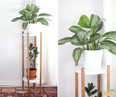 Tá precisando de uma ideia para criar um espaço especial para suas plantas dentro de casa? Copie essa estrutura que exige poucos materiais e é fácil de fazer!