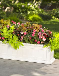 Window boxes aren't just for windows! Use one on your deck under a tree to highlight the edge of the patio or deck, and fill it with colorful annuals that thrive in the shade. We call this container recipe 'Sophisticated'.