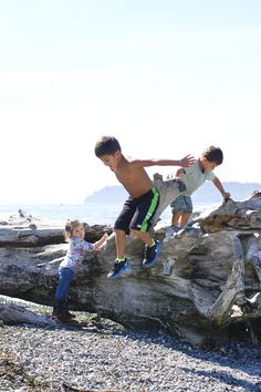 """Driftwood became high cliffs in the forest."" #FamilyTrails #Imagination"