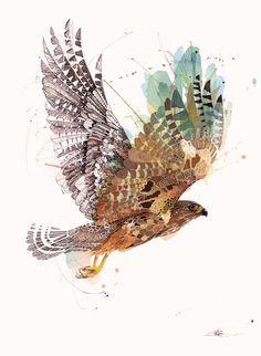 Rachel Walker Limited Edition Prints - Forest & Bird